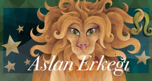 aslan-erkeği